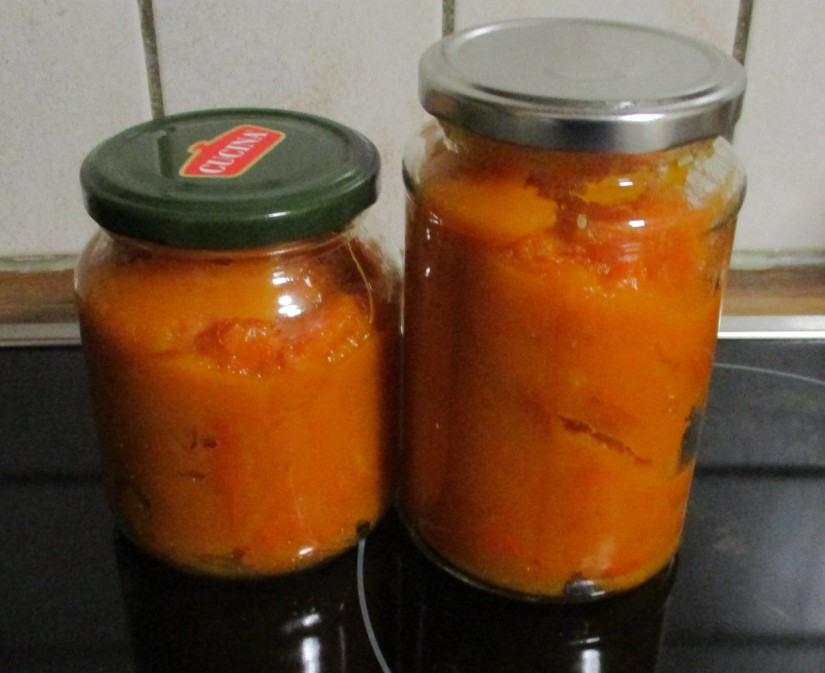 pompoenpuree cannend pumpkin vegan veganistisch