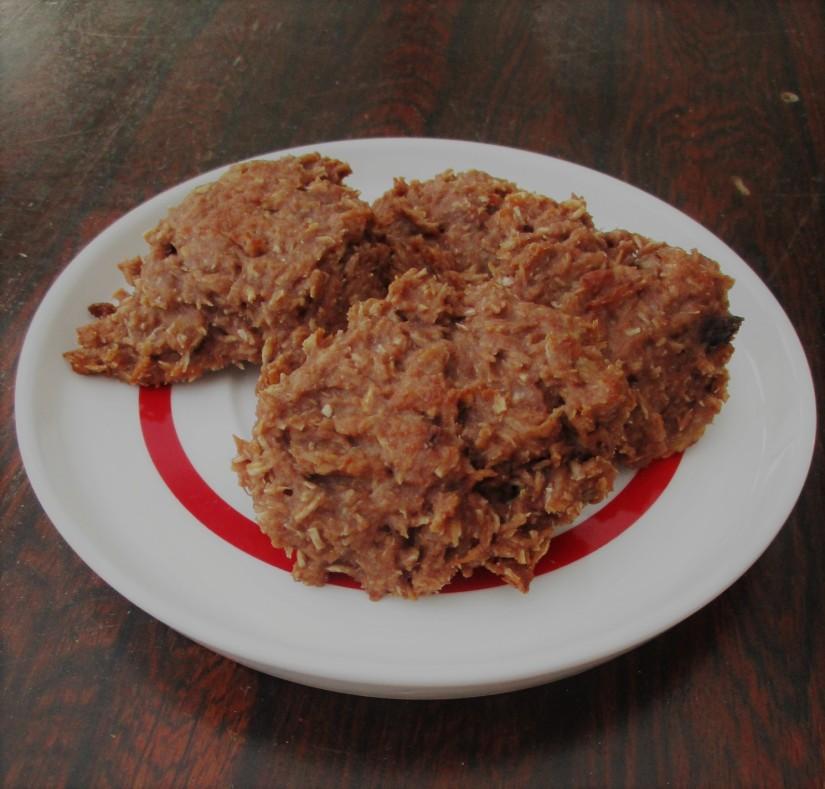 zero waste koekejs met kokos vegan veganistisch suikervrij e-nummervrij lactosevrij soyavrij glutenvrij